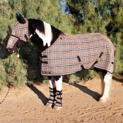 Kensington Draft Protective Fly Sheet 87In Deluxe found on Bargain Bro India from Horse.com for $199.85