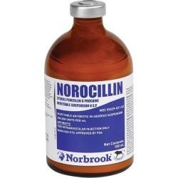 Norocillin Injectable Antibiotic 500 ml