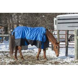 Tough-1 Super Tough 1680D Sheet Snuggit Neck 69 Ro found on Bargain Bro India from Horse.com for $94.95