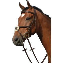 Collegiate Syntovia Figure 8 Bridle Pony Brown found on Bargain Bro India from Horse.com for $59.95
