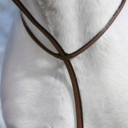Plain Raised Standing Martingale Horse Australian found on Bargain Bro India from StateLineTack.com for $64.99