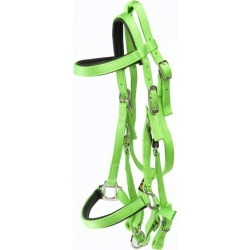 Triple E Nylon Padded Halter Trail Bridle Lime found on Bargain Bro from StateLineTack.com for USD $35.71