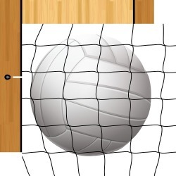Volleyball Paper - Volleyball - Echo Park found on Bargain Bro from A Cherry On Top Crafts for $0.99