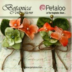 Apricot Velvet Hydrangea Stems - Petaloo