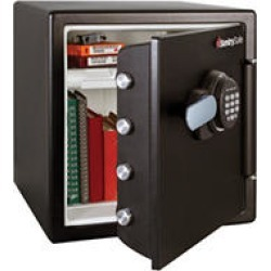 Electronic Fire Safe   1