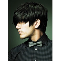 Short Straight Natural Black Wig Mono Top 100% Human Hair Mens Hairstyle
