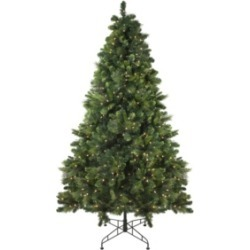 Northlight 7.5' Pre-Lit Sequoia Mixed Pine Artificial Christmas Tree - Clear Lights