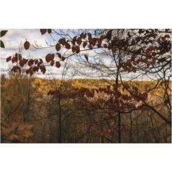 "Kurt Shaffer Photographs Autumn in the Cuyahoga Valley Canvas Art - 15.5"" x 21"""