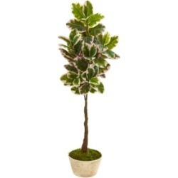 "Nearly Natural 67"" Variegated Rubber Leaf Artificial Tree in Planter Real Touch"