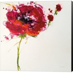 Poppy Master on White by Jan Griggs Canvas Art