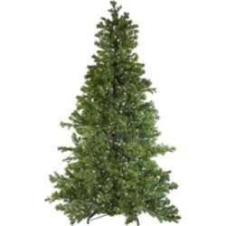 Northlight 6.5' Layered Pine Instant Power Artificial Christmas Tree - Dual Color Led Lights found on Bargain Bro India from Macys CA for $1110.12
