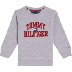 Tommy Hilfiger Little Boys Henry Pullover Crew Sweatshirt found on Bargain Bro Philippines from Macy's for $39.50