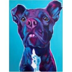 DawgArt Pit Bull Neko Canvas Art - 36.5