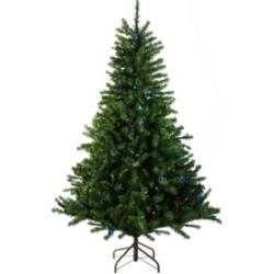 Northlight 10' Pre-Lit Canadian Pine Artificial Christmas Tree - Multi Led Lights found on Bargain Bro India from Macys CA for $1549.52
