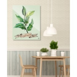 """Creative Gallery Watercolor Bay Leaves on Green 20"""" x 24"""" Acrylic Wall Art Print"""