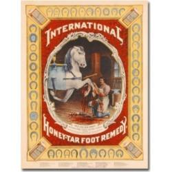 'Honey Tar Foot Remedy for Horses 1890' Canvas Art - 24
