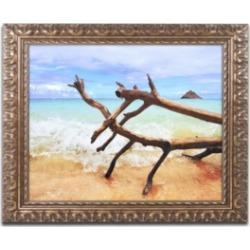 Jason Shaffer 'Hawaii 2' Ornate Framed Art - 20
