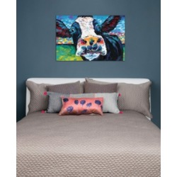 """iCanvas """"Curious Cow Ii"""" by Carolee Vitaletti Gallery-Wrapped Canvas Print (26 x 40 x 0.75)"""