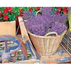 Springbok Puzzles Basket of Lavender 1000 Piece Jigsaw Puzzle found on Bargain Bro India from Macy's for $26.00