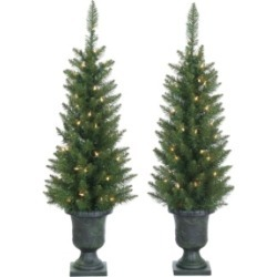 Sterling 3.5ft. Potted Norway Pine with 50 Clear Lights - Set of 2 found on Bargain Bro India from Macys CA for $89.05