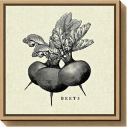 Amanti Art Linen Vegetable Bw Sketch Beets by Studio Mousseau Canvas Framed Art