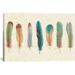 """iCanvas Feather Tales Vii by Daphne Brissonnet Gallery-Wrapped Canvas Print - 26"""" x 40"""" x 0.75"""""""