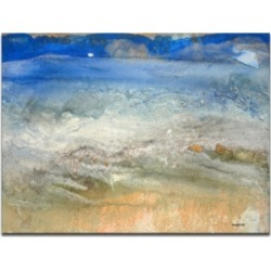 Ready2HangArt 'Sparkling Shores' Canvas Wall Art, 30x40