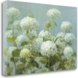 Tangletown Fine Art White Hydrangea Garden by Danhui Nai Giclee Print on Gallery Wrap Canvas, 24