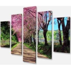 "Designart Cherry Blossom Pathway In Chiang Mai Canvas Art Print - 60"" X 32"" - 5 Panels"