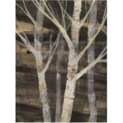 Albena Hristova Silver Trees I Canvas Art - 27