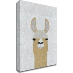 Tangletown Fine Art Llama by Annie Bailey Art Print on Canvas, 24