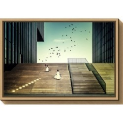 Amanti Art Free like a bird by Dennis Mohrmann Canvas Framed Art found on Bargain Bro India from Macy's for $76.99