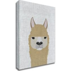 Tangletown Fine Art Alpaca by Annie Bailey Art Print on Canvas, 24