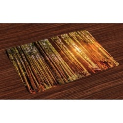 Ambesonne United States Place Mats, Set of 4