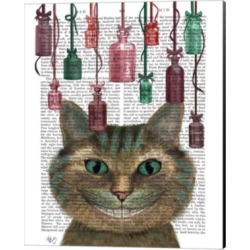 Cheshire Cat And Bottles By Fab Funky Canvas Art found on Bargain Bro India from Macy's for $68.99