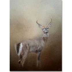 Jai Johnson 'Master Of The Forest' Canvas Art - 32