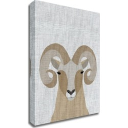 Tangletown Fine Art Bighorn Sheep by Annie Bailey Art Print on Canvas, 24
