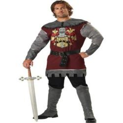 BuySeason Men's Noble Knight Costume