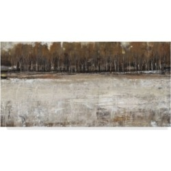 Tim Otoole Neutral Reflection I Canvas Art - 37