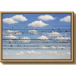 Amanti Art Concerto for Birds by Jared Lim Canvas Framed Art found on Bargain Bro India from Macy's for $85.99