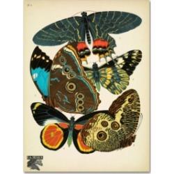 Vintage Apple Collection 'Papillons 2' Canvas Art - 32