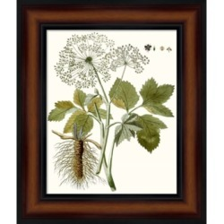 Lacy Leaves Iv by Unknown Framed Art found on Bargain Bro India from Macy's for $149.99