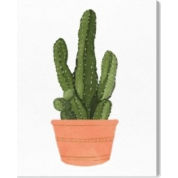 Oliver Gal Cactus Coral Iii Canvas Art, 30