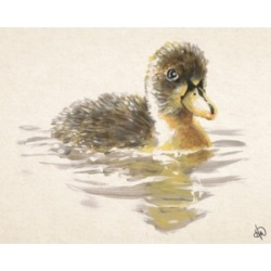 """Creative Gallery Cupcake the Duckling Watercolor 36"""" x 24"""" Canvas Wall Art Print"""