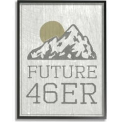 "Stupell Industries Future 46er Hiking Adirondacks Framed Giclee Art, 16"" x 20"""