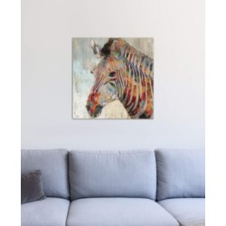 "iCanvas ""Paint Splash Zebra"" by Nan Gallery-Wrapped Canvas Print"