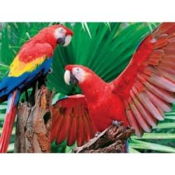 Springbok Puzzles Scarlet Macaw 400 Piece Jigsaw Puzzle