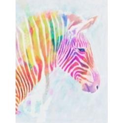 "Victoria Borges Fluorescent Zebra Ii Canvas Art - 20"" x 25"""