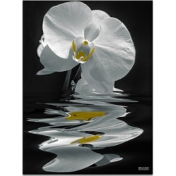 Ready2HangArt 'White Orchid' Oversized 40