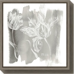 Amanti Art Water Wash I Neutral Floral by Sue Schlabach Canvas Framed Art found on Bargain Bro Philippines from Macy's Australia for $76.76